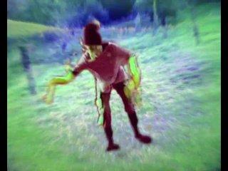 omegahertz - psychedelic valley-silvie