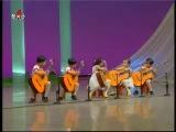 [гитары] 차순정 «Наш учитель детского сада» {Музыка КНДР} — Яндекс.Видео